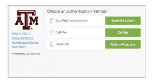 Duo authentication